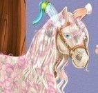 Banho do cavalo