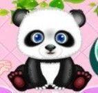 Panda na banheira