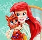 Ariel bichinho de estimação