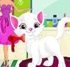 Salão de Beleza de Gato da Barbie