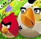 Passeio dos Angry Birds