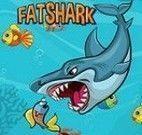 Tubarão comer peixinhos