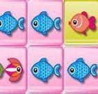 Peixes no quadrado