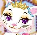 Princesa gata roupas