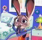Judy arrumar quarto
