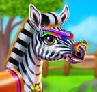Cuidar da pequena zebra
