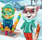 Família gatos esquiar