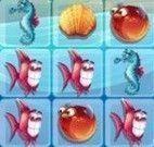Trincas do aquário