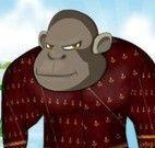 Vestir roupas no gorila