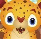 Tigre bebê no dentista
