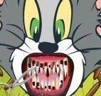 Tom e Jerry no dentista
