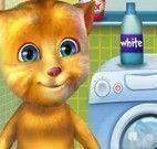Gato virtual lavar roupas