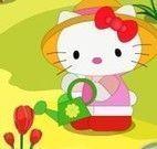 Decorar jardim da Hello Kitty