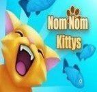 Alimentar gatinhos carinhosos