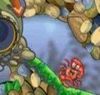 Pegar as perolas para o caranguejo