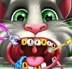 Tom gatinho no dentista