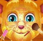 Gato Ginger limpeza de pele