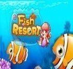 Cuidar de peixes no aquário