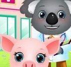 Cuidar do porquinho