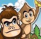 Pegar banana dos macacos