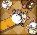 Gato e ratos