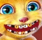 Gatinho virtual no dentista