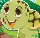 Diferenças imagem da tartaruga