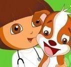 Dora veterinária no pet shop