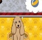 Brincar e cuidar de cachorros