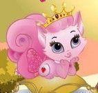 Banho na gatinha princesa
