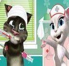 Enfermeira para cuidar do gatinho