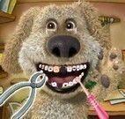 Cuidar do dentes do cachorro