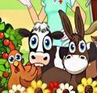 Cuidar de animais na fazenda