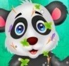 Banho do panda