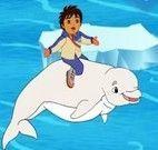 Diego e o Golfinho Salvando o Urso Polar