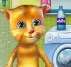 Gato virtual lavanderia