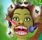 Fiona no dentista