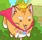 Novo visual do gato Chaninha