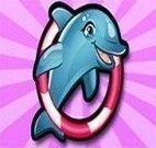 Show do golfinho 6