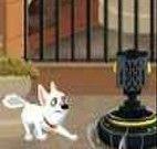 O cãozinho Bolt