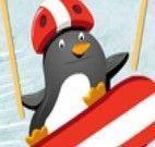 Pinguin skatista