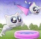 Salto do gatinho