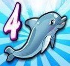 Show do Golfinho 4