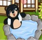 Spa para cuidar de bichinhos e urso