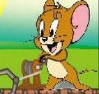 Tom e Jerry na mina de ouro