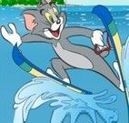 Tom e Jerry Windsurf