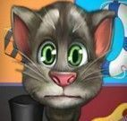 Tom gato virtual profissões